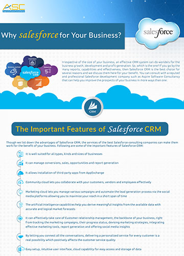 Important Feature of Salesforce CRM | Offshore Software Development Services