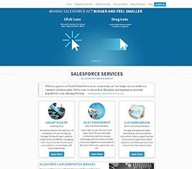 Salesforce Consulting Companies - Portfolio
