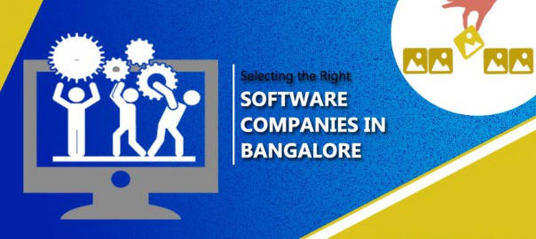 Selecting the Right Software Company