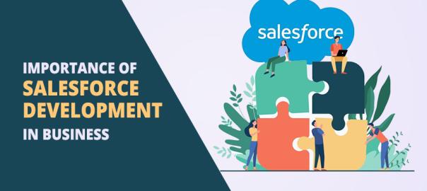 Importance of Salesforce Development in Business