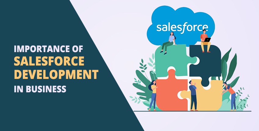 Importance of Salesforce Development in Business